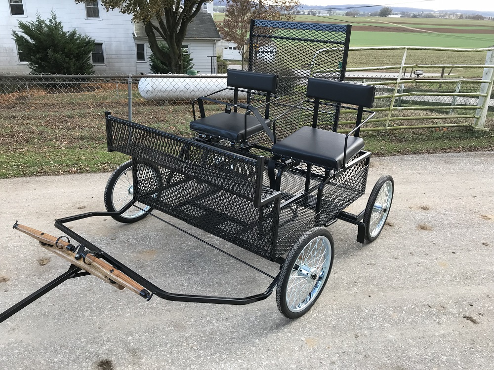 Handicapped Carriage